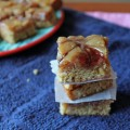 Cookie Butter and Jelly Blondies 6--012713