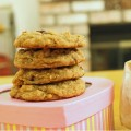 Graham Cracker Chocolate Chip Cookies 4--082013