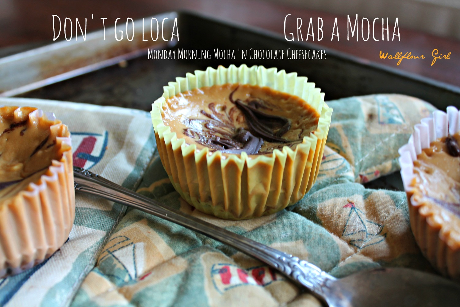 Monday Morning Mocha 'n Chocolate Cheesecake 9--092313