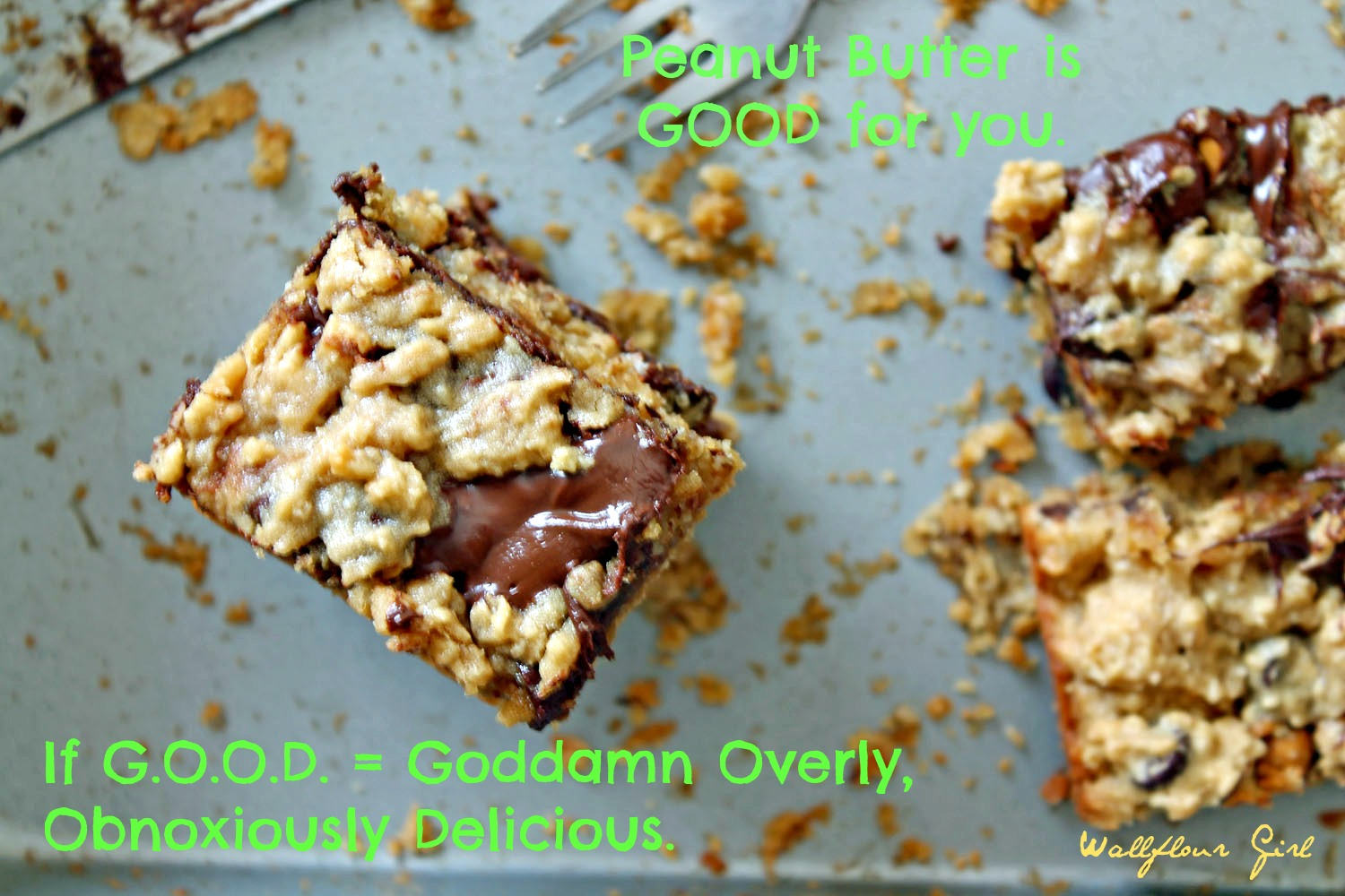 Peanut Butter Lovers' Chocolate Oat Squares 10--101313