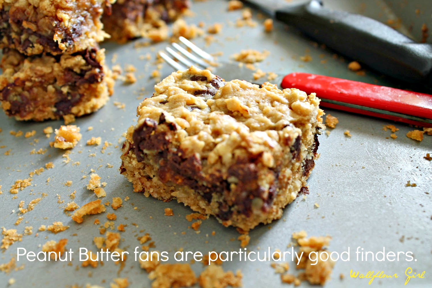 Peanut Butter Lovers' Chocolate Oat Squares 13--101313