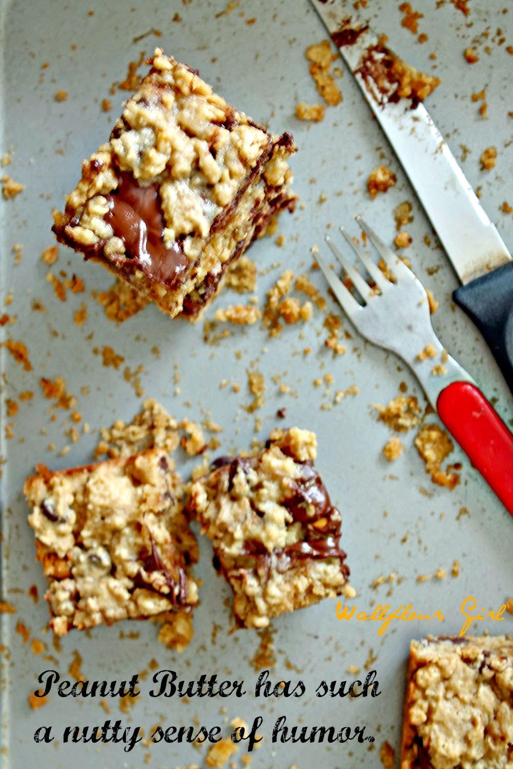 Peanut Butter Lovers' Chocolate Oat Squares 16--101313