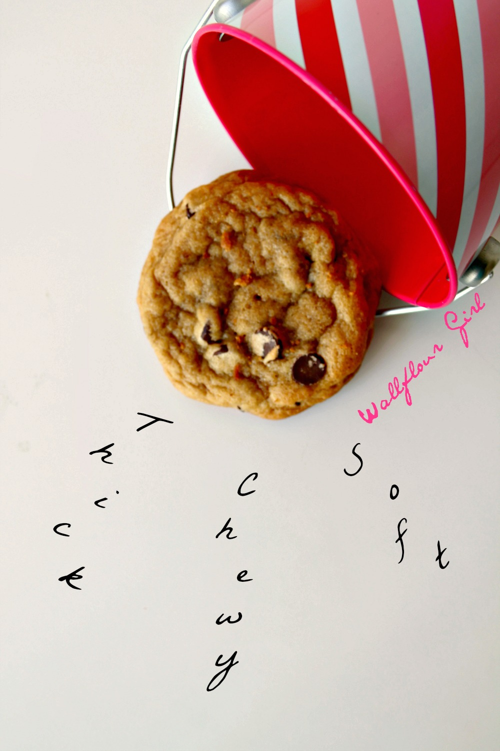 Favorite Thick and Chewy Chocolate Chip Cookies 19--021014