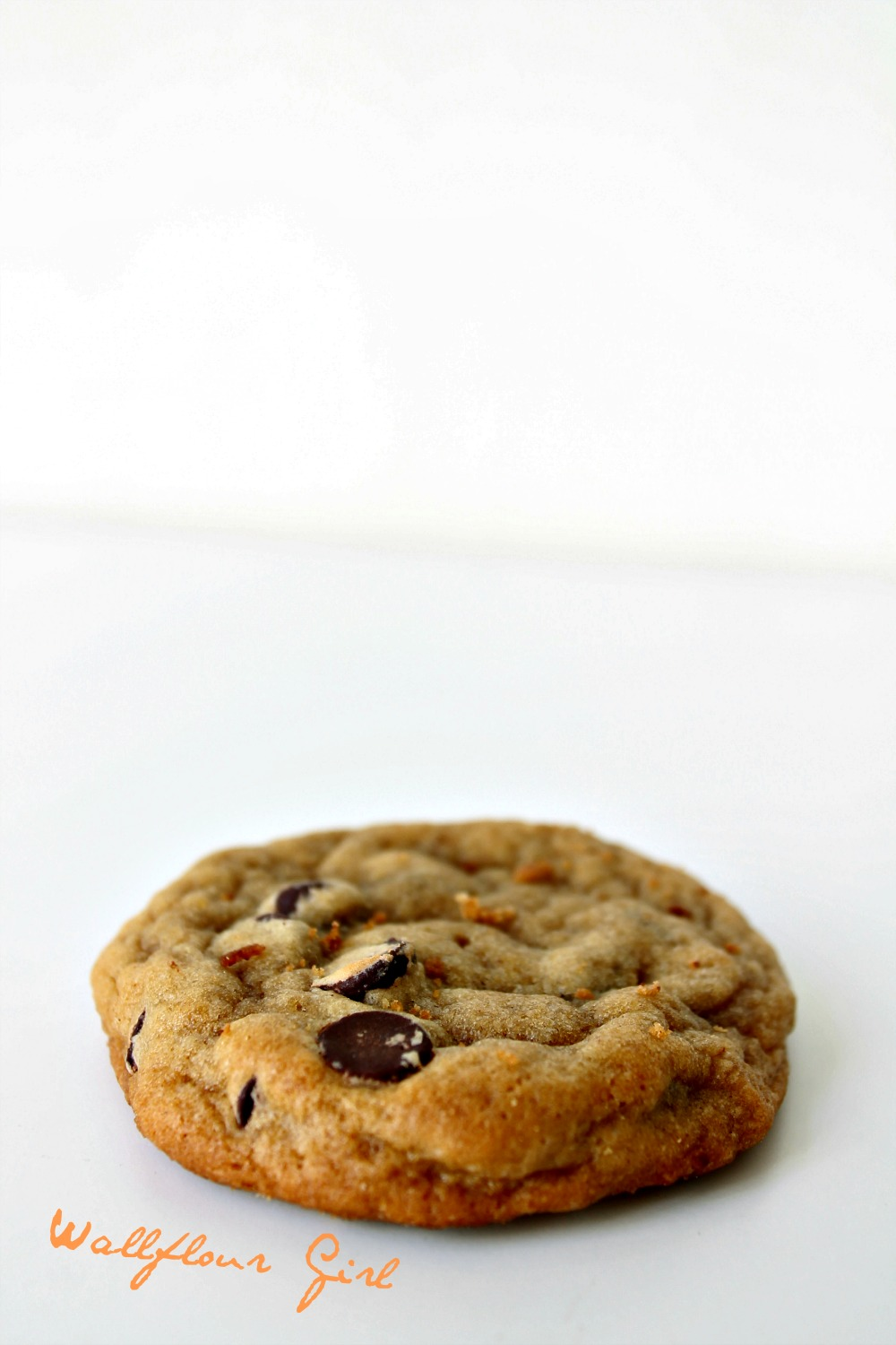 Favorite Thick and Chewy Chocolate Chip Cookies 32--021014