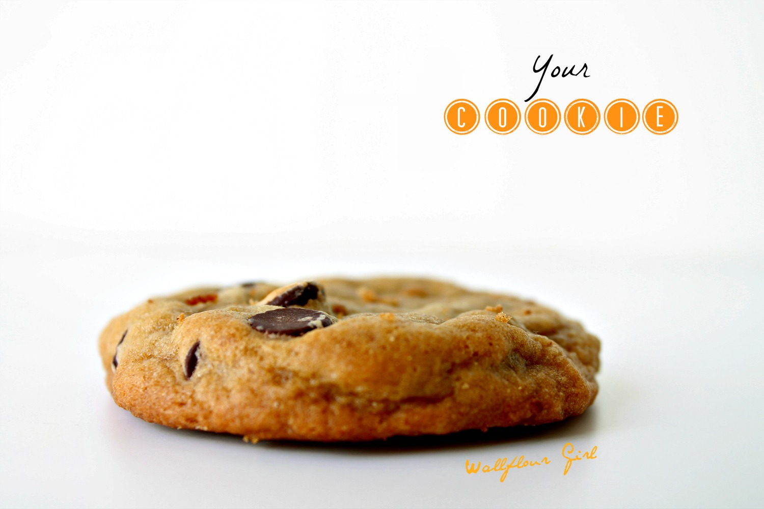Favorite Thick and Chewy Chocolate Chip Cookies 8--021014
