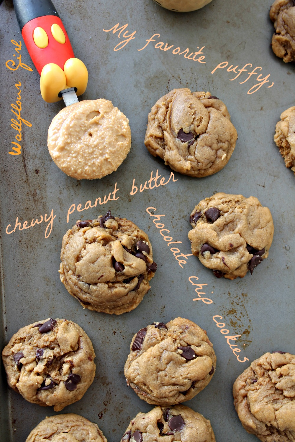 My Favorite Puffy, Chewy Peanut Butter Chocolate Chip Cookie 25--022114
