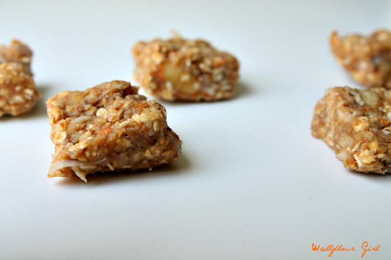 Healthy No-Bake Tropical Coconut Applesauce Bars 21--090314