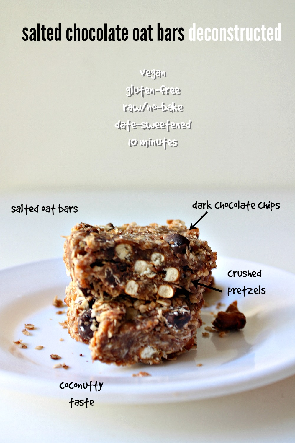 Raw Salted Chocolate Oat Healthy Bars with Dates and Coconut 12--100414