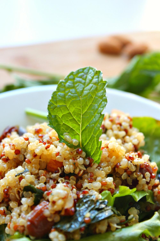 Quinoa Salad 3--090216